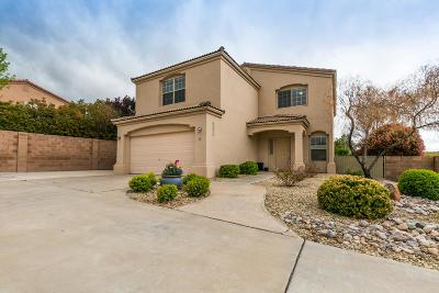 Albuquerque Single Family Home For Sale: 6800 Glenturret Way NE