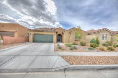 Albuquerque Single Family Home For Sale: 4920 Calle Espana NW