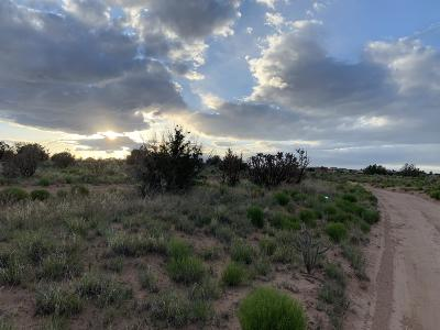 Rio Rancho Residential Lots & Land For Sale: 6017 Amigo Place NE