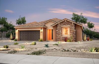Albuquerque Single Family Home For Sale: 9101 Vista Bosquejo Road NW