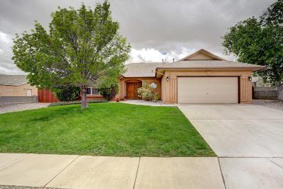 Rio Rancho Single Family Home For Sale: 6824 Augusta Hills Drive NE