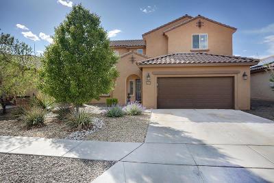 Albuquerque Single Family Home For Sale: 9505 Granite Ridge Drive NW