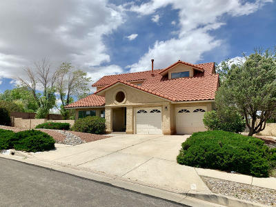 Albuquerque NM Single Family Home For Sale: $227,500
