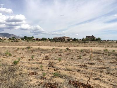 Albuquerque Residential Lots & Land For Sale: 10000 Alameda Boulevard NE