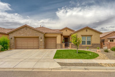 Rio Rancho Single Family Home For Sale: 3923 Linda Vista Avenue