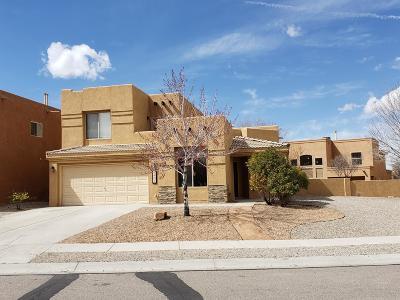Albuquerque Single Family Home For Sale: 6801 Calle Santiago NE