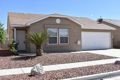 Albuquerque Single Family Home For Sale: 5762 Pinon Altos Road NW