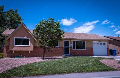 Albuquerque Single Family Home For Sale: 1613 Erbbe Street NE