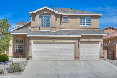 Bernalillo County Single Family Home For Sale: 9315 Drolet Drive NW