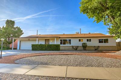 Bernalillo County Single Family Home For Sale: 8805 Lagrima De Oro Road NE