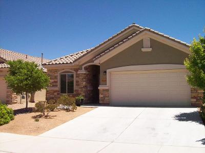 Bernalillo Single Family Home For Sale: 868 Golden Yarrow Trail