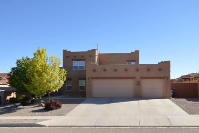 Rio Rancho Single Family Home For Sale: 6108 Chaco Canyon Court NE
