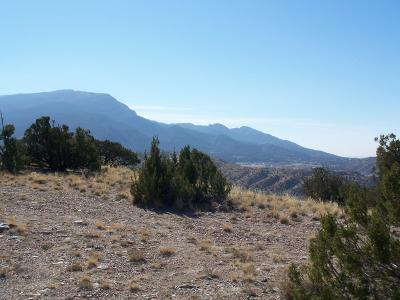 Residential Lots & Land For Sale: Camino Halcon - 2.5 Acres