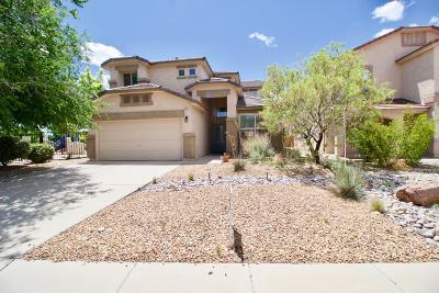 Rio Rancho Single Family Home For Sale: 1411 Peppoli Loop SE