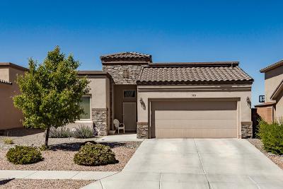 Rio Rancho Single Family Home For Sale: 3933 North Pole Loop NE