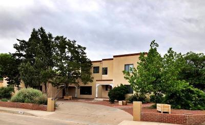 Albuquerque Single Family Home For Sale: 3600 Calle Del Ranchero NE