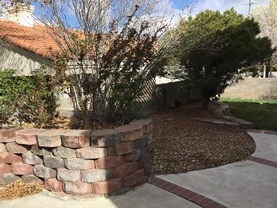 Single Family Home For Sale: 815 Calle Verde Drive SE