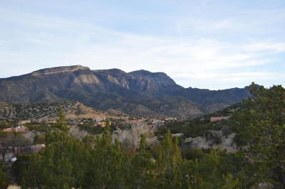 Residential Lots & Land For Sale: Lot 110 Yucca Lane