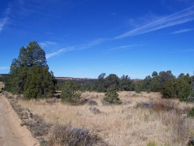 Cibola County Residential Lots & Land For Sale: Lot 22 Bucking Horse - Candy Kitchen