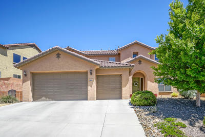 Rio Rancho Single Family Home For Sale: 3801 Tierra Vista Place NE