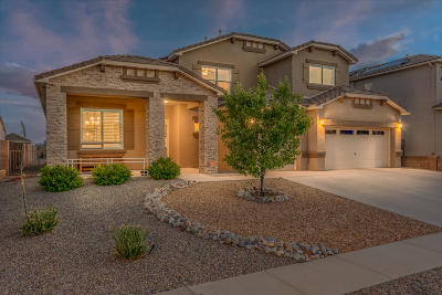 Albuquerque, Rio Rancho Single Family Home For Sale: 4208 Cholla Drive NE