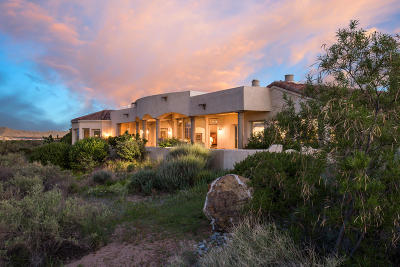 Albuquerque Single Family Home For Sale: 4110 Waterwillow Place NW