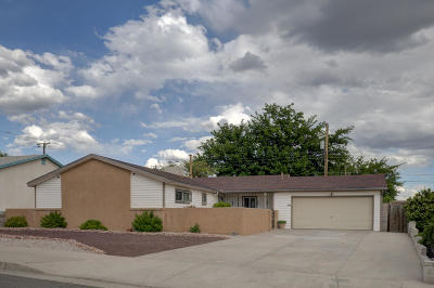 Albuquerque Single Family Home For Sale: 13000 Turquoise Avenue NE
