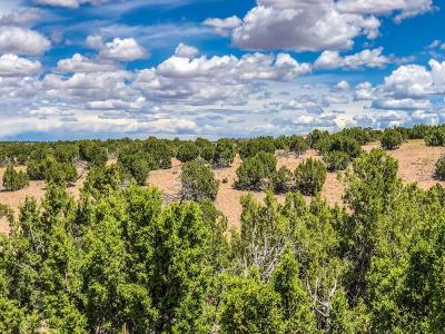 Santa Fe County Residential Lots & Land For Sale: 58 Barosa Road