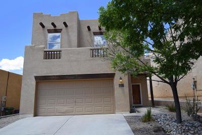 Rio Rancho Single Family Home For Sale: 1305 Desert Ridge Drive SE