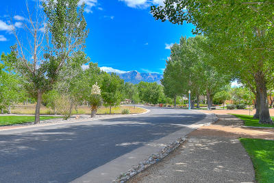 Residential Lots & Land For Sale: 674 Camino Vista Rio