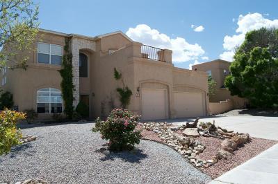 Rio Rancho Single Family Home For Sale: 6601 Freemont Hills Loop NE