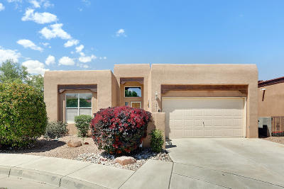 Albuquerque Single Family Home For Sale: 6419 Star Bright Road NW