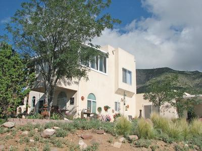 Santa Fe County Single Family Home For Sale: 93 Mountain Road