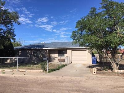 Socorro County Single Family Home For Sale: 1211 Avenida De Paisano