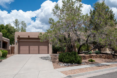 High Desert Single Family Home For Sale: 12609 Sunset Ridge Place NE