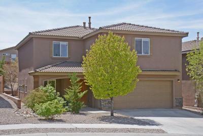 Albuquerque, Rio Rancho Single Family Home For Sale: 1939 Busher Street SE
