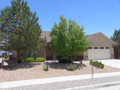 Albuquerque Single Family Home For Sale: 10036 Avenida Vista Sol NW