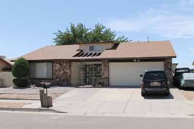 Albuquerque Single Family Home For Sale: 7312 Mint Place NW