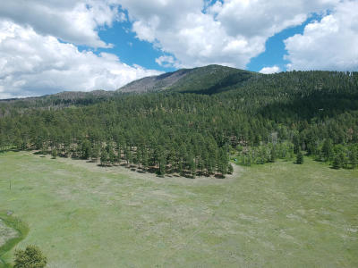 Jemez Springs NM Residential Lots & Land For Sale: $72,500