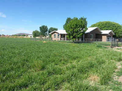 Valencia County Single Family Home For Sale: 77 Bloom N Shine Road