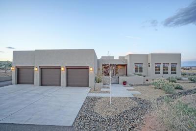 Single Family Home For Sale: 526 Albino Road NE