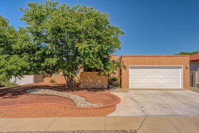 Albuquerque Single Family Home For Sale: 7005 Red Sky Court NE