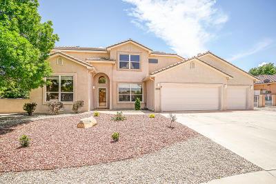 Rio Rancho Single Family Home For Sale: 3948 Augusta Drive SE