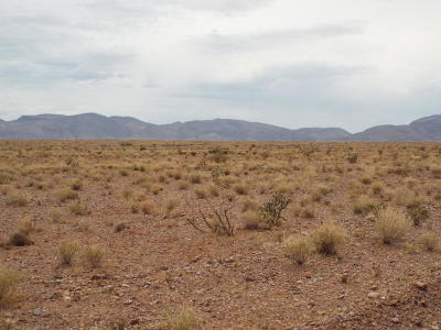 Socorro County Residential Lots & Land For Sale: Lot 164 Whispering Meadows