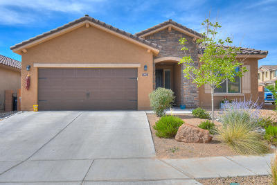 Rio Rancho Single Family Home For Sale: 2861 Walsh Loop SE