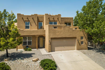 Albuquerque, Rio Rancho Single Family Home For Sale: 6408 Grayson Hills Drive NE
