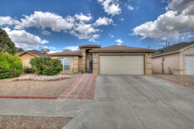 Albuquerque Single Family Home For Sale: 2216 Summer Ray Drive NW