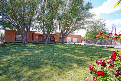 Belen Single Family Home For Sale: 1239 Sunflower Avenue