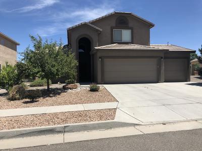 Albuquerque Single Family Home For Sale: 8228 Petros Avenue NW
