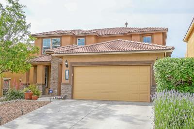Rio Rancho Single Family Home For Sale: 7201 Fairbanks Drive NE